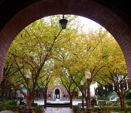 Archway of Healy Hall, Georgetown University, Washington DC Fall 2011