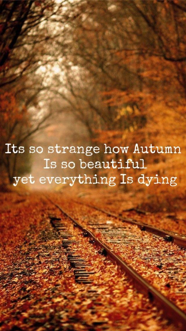 Wallpaper Lockscreen Autumn In 2019 Fall Pictures Season