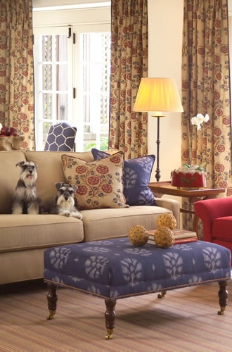 Well, hello schnauzers!: Living Spaces, Hello Schnauzers, Blue Patter