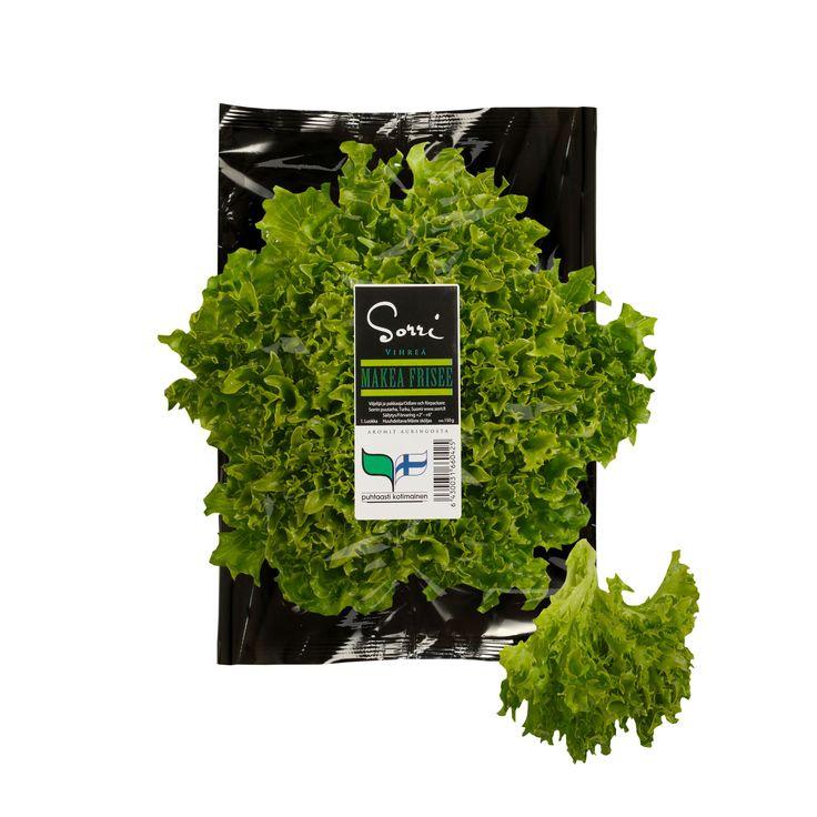 Vihreä Makea Frisee.  Minä kasvan ja kasvan ja maistun hyvältä ja minussa on paljon salaattia. Olenhan Puutarhurin Unelma!
