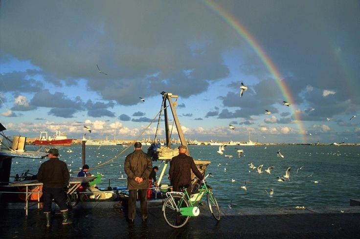 La quiete dopo la tempesta da San Benedetto del Tronto....