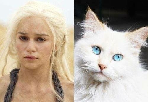 Khaleesi !