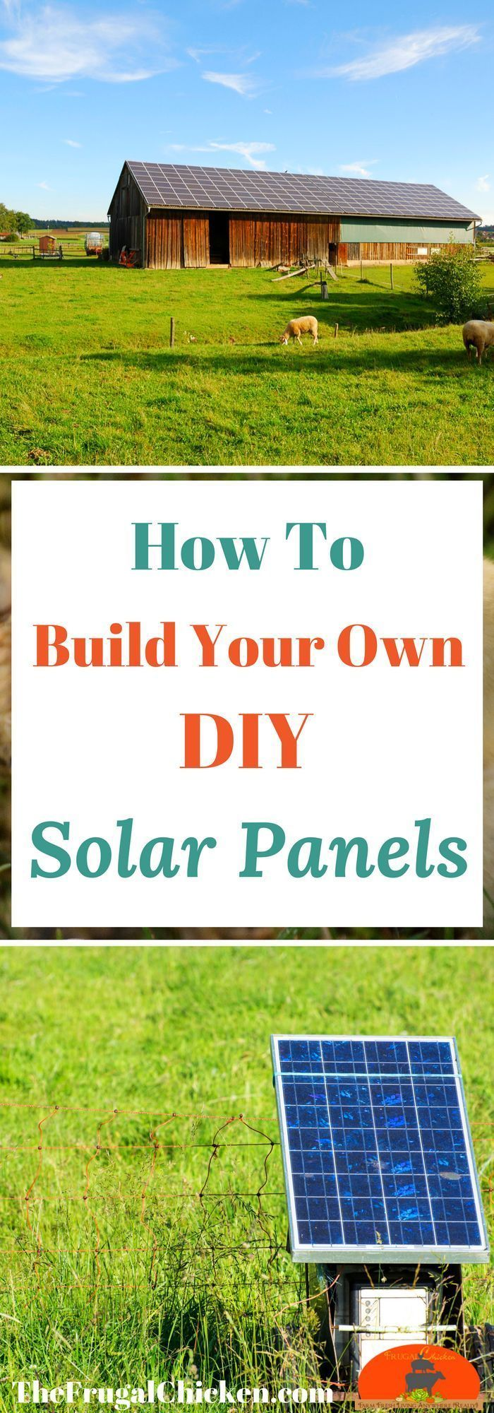 Building your own solar panels is easy if you have guidance! Learn how you can make DIY solar panels in your backyard!