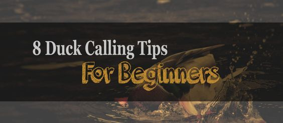8 duck hunting tips that will get your duck hunting game to the next level! www.wadinglab.com