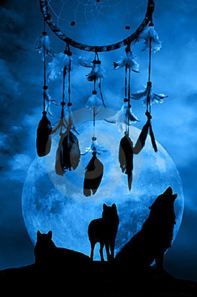 dreamcatcher wolves feathers white - photo #33
