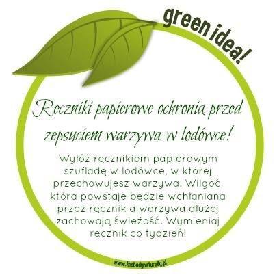Green Life | Ręczniki papierowe ochronią przed zepsuciem warzywa w lodówce! - The Body. Naturally.