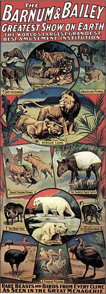 Barnum Bailey Menagerie Circus Posters Lions Tigers | eBay