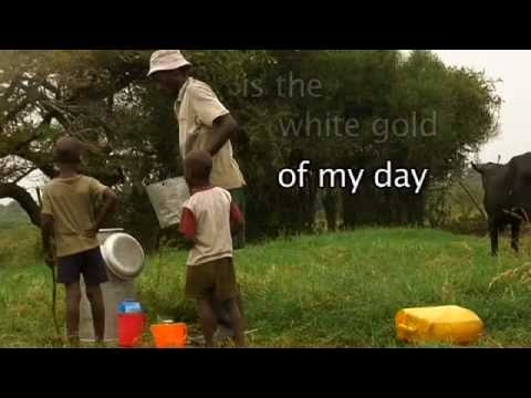 Ugandan Milking Song (Length: 1:18) A traditional milking song recorded in Uganda and describing the importance of milk to rural families.