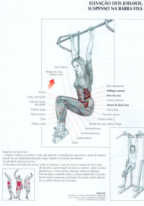 Elevação de joelhos suspenso na barra fixa http://emagrecerrapidogarantido.com.br/tipos-de-abdominais-para-perder-barriga/