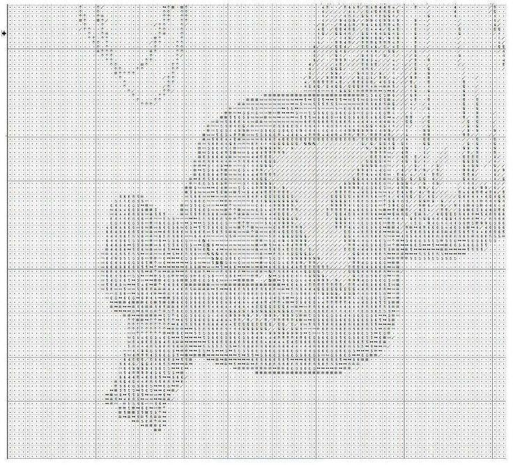 cicogna 3