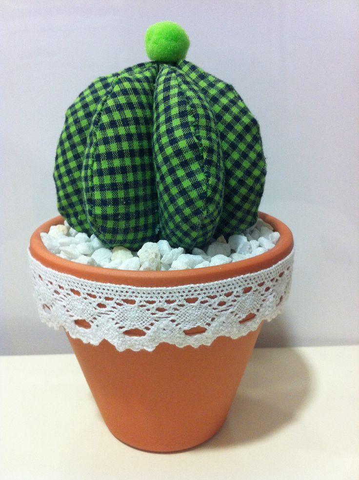 les 251 meilleures images propos de cactus cact e succulente dans tous ses tats sur. Black Bedroom Furniture Sets. Home Design Ideas