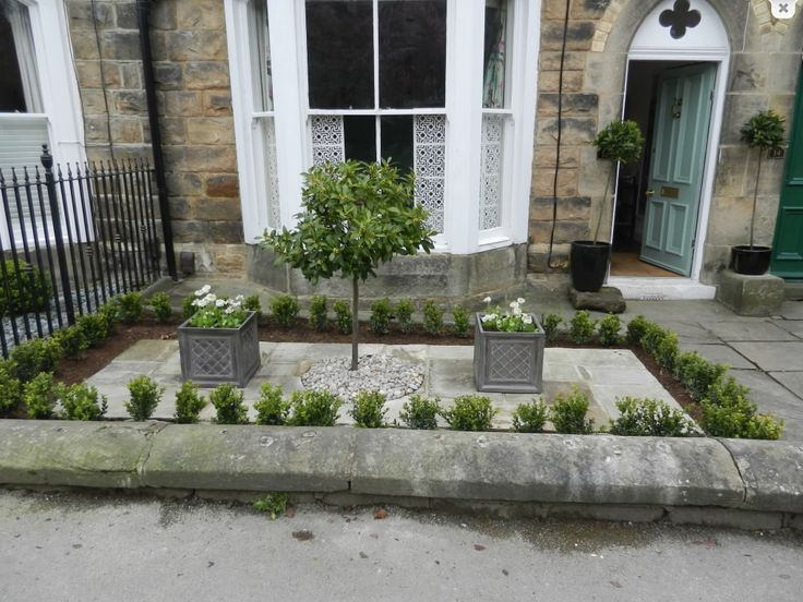Box hedging, ornamental pots and central tree