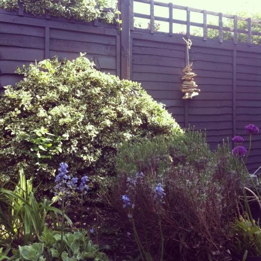 best 25 fence paint colours ideas on pinterest grey. Black Bedroom Furniture Sets. Home Design Ideas