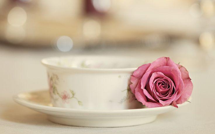 tea cup plate rose pink