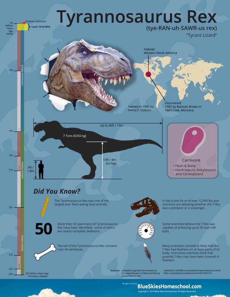 best 25 tyrannosaurus rex facts ideas on pinterest. Black Bedroom Furniture Sets. Home Design Ideas