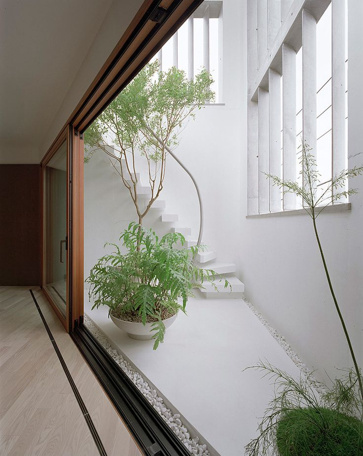 M House by Aoki Jun | Yellowtrace external internal courtyard