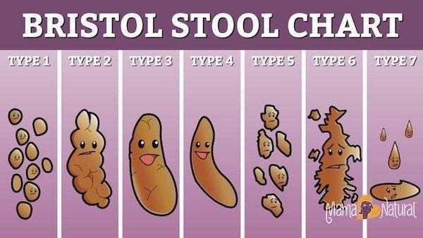 bristol-stool-chart-happy-mama-natural-version_jpg_940x0_q85
