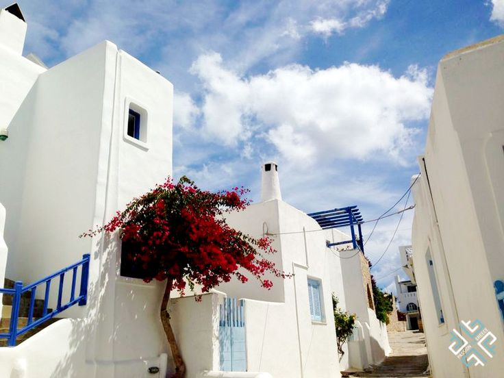 Pretty streets of Paros #passionforgreece #greece