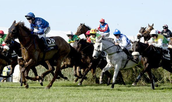 Grand National 2016 Betting Tips: Guide to this year's big race at Aintree