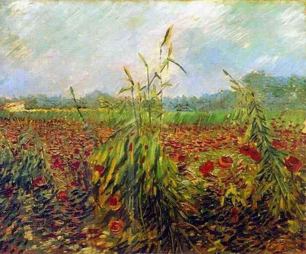 Vincent van Gogh: Green Ears of Wheat. Oil in canvas. Arles: June, 1888.
