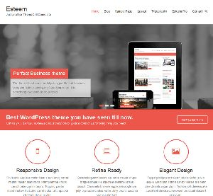 Esteem Wordpress Theme is a simple and easy to use website template that you can use for your blogging, showcasing a portfolio or blogging. You can set this theme into boxed or wide layout. It offer users unlimited...