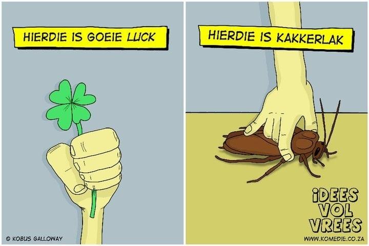 Goeie luck - Kakkerlak