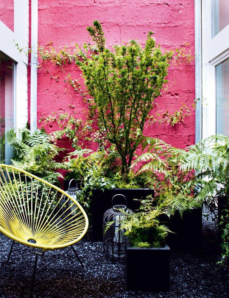 Les 25 meilleures idées concernant petits jardins de devant sur ...