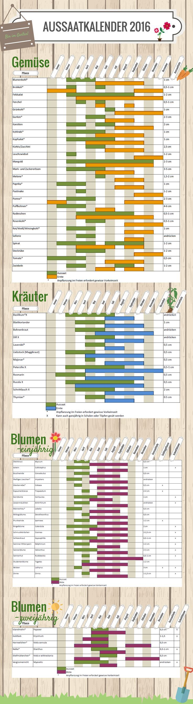 Aussaatkalender 2016  #vegan #Gemüsebeet  Entdeckt von vwww.vegaliferocks.de✨ I Fleischlos glücklich, fit & Gesund✨ I Follow me for more inspiration  /vegaliferocks/