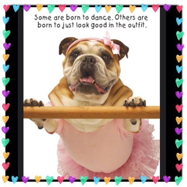 Me Dance? This PAW will keep lookin hot & vote for @sirsleep daddy @iamvalc to steam up the #dance floor! PS I also vote @SirSleep to join the PAW of Fame with an @furrypawpics custom portrait!! #furrypawlife www.furrypawpics.com @janelparrish #dwts #instaart #petart #art #teamjanelskiy