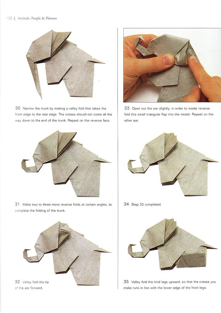 Origami elephant:amazing paper elephant making step-by-step.