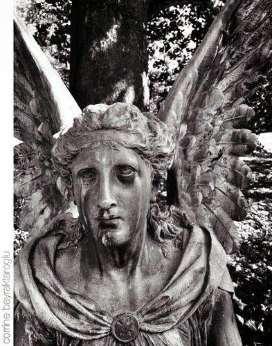weeping angel spring grove cemetery cincinnat i#gravestones