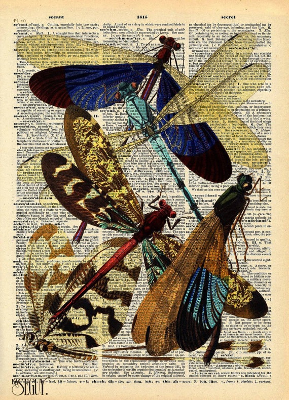 Intricate E.A. Séguy Insect Print (Calopterix. Australie) on an Antique Upcycled Bookpage. $9.00, via Etsy.