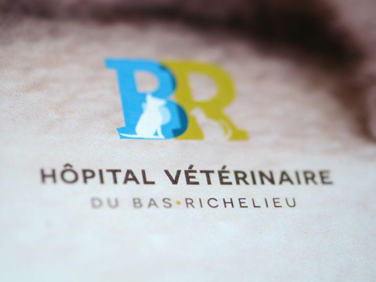 HÔPITAL VÉTÉRINAIRE DU BAS-RICHELIEU | Avec une image chaleureuse et conviviale, l'Hôpital vétérinaire du Bas-Richelieu est au service des propriétaires de petits animaux à Sorel-Tracy depuis 1984.