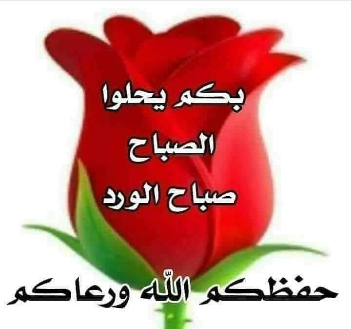 Pin By Lovely On صلوات على محمد واله و صباحياة Good Morning Beautiful Flowers Beautiful Flowers Wallpapers Abstract Iphone Wallpaper