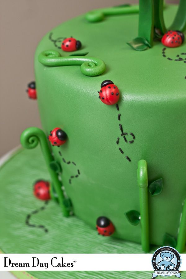 1000+ ideas about Ladybug Birthday Cakes on Pinterest ...