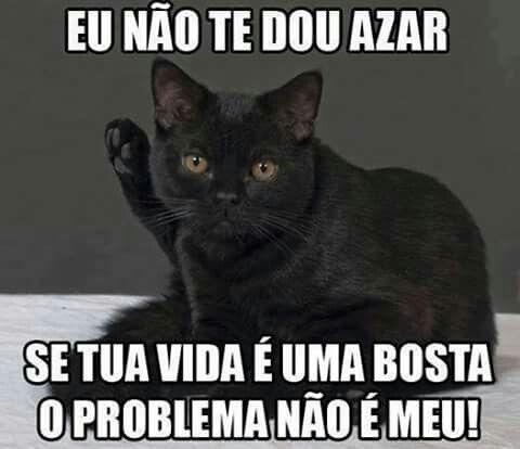 A culpa não e do gato preto é sua :P