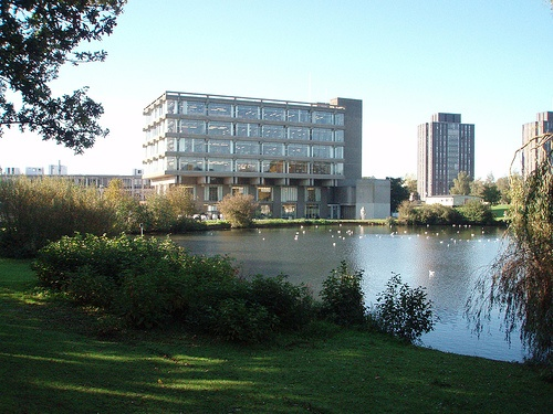 A view from the lake towards the library at the University of Essex Colchester Campus
