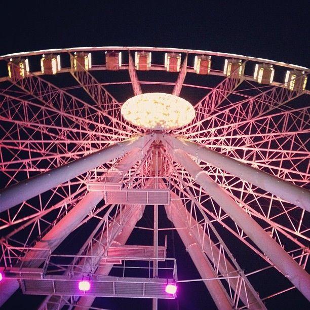 @igersbologna The pink wheel