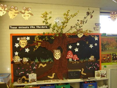 Animals in the dark Display, classroom displays, class display, animal, animals in dark, live, dark, Early Years (EYFS), KS1 Primary Teaching Resources