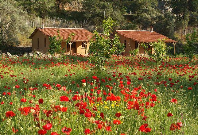 26 Mar – 2 Apr, 2016 Healing Power of Nature Yoga Retreat - South Turkey  https://glomad.com/experience/1468/healing-power-of-nature-yoga-retreat-south-turkey