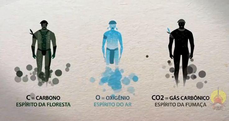Projeto Luz e Vida: Missão Amazônia: FUNAI: O Ciclo do Carbono