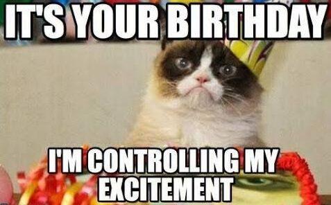 Happy Birthday Memes Funny With Naughty Cat Happy Birthday Funny Cats Funny Happy Birthday Meme Happy Birthday Cat