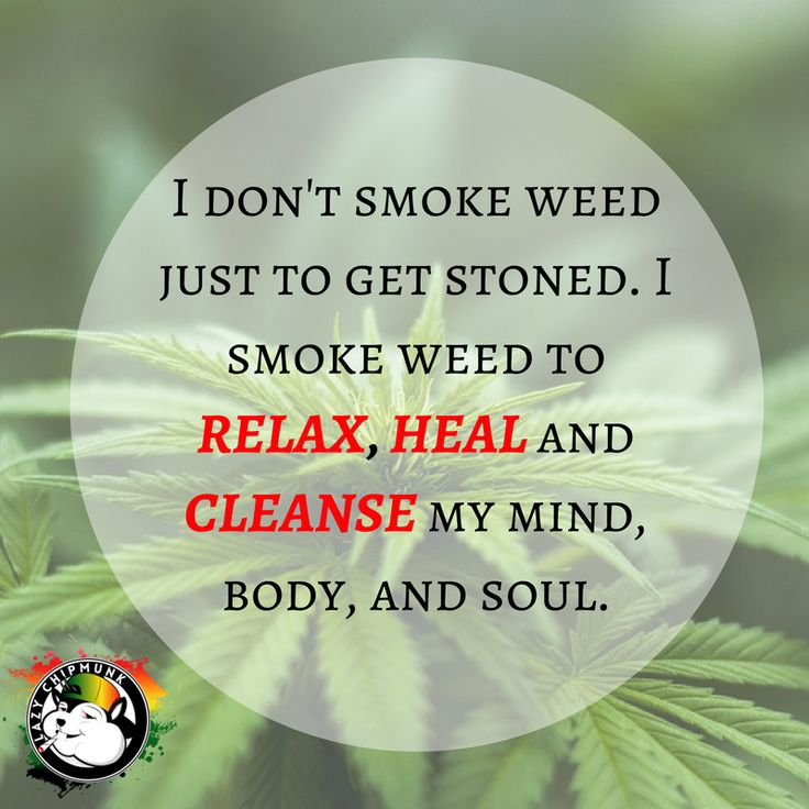 Why do I smoke weed? #lazychipmunk #weed #marijuana #smoking #bongs (scheduled via http://www.tailwindapp.com?utm_source=pinterest&utm_medium=twpin)