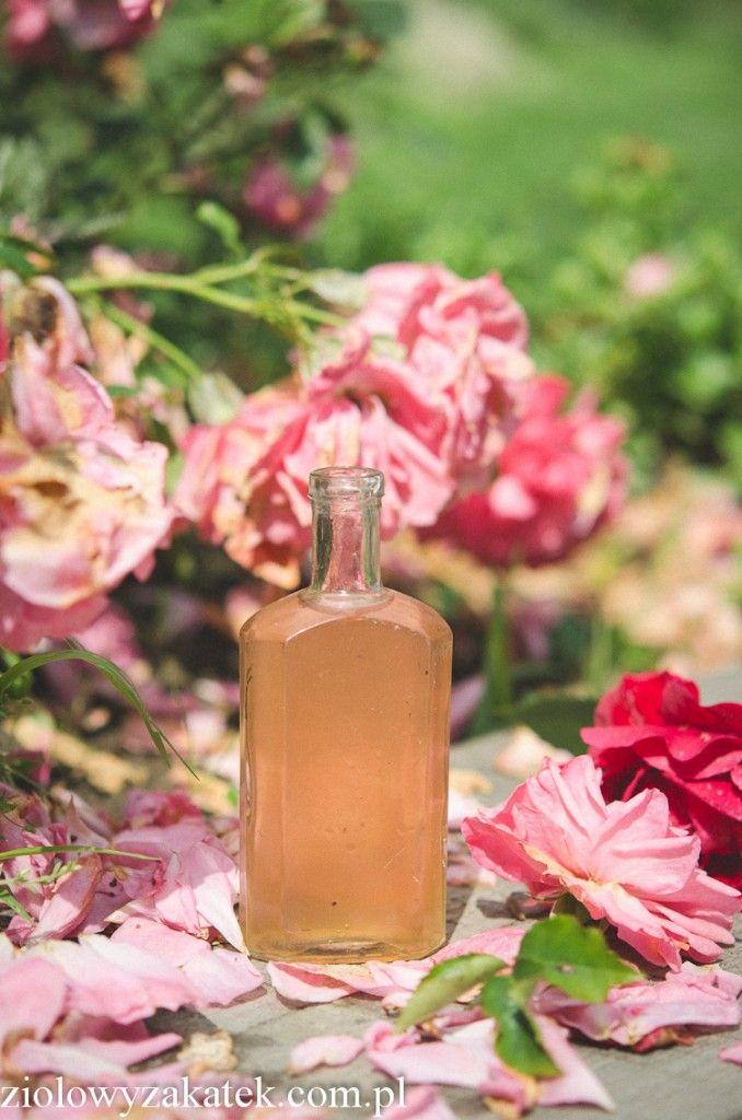 hydrolat z róży