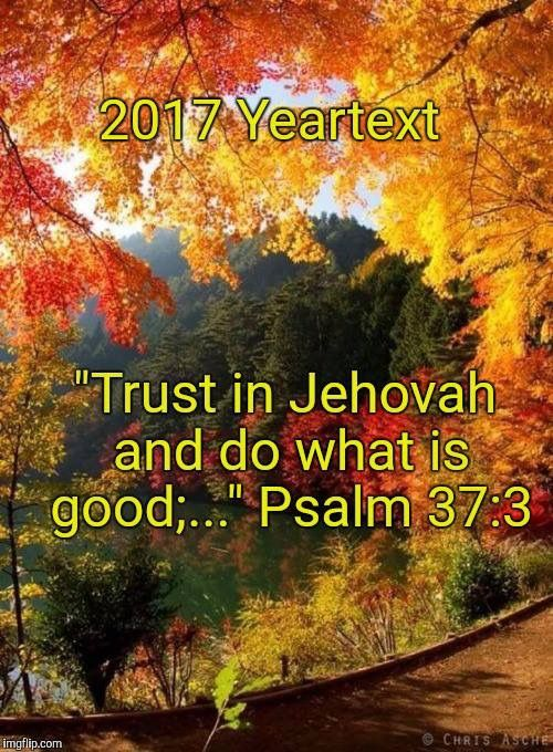 """Psalm 37:3 ~ """"Trust in JEHOVAH and do what is GOOD..."""""""