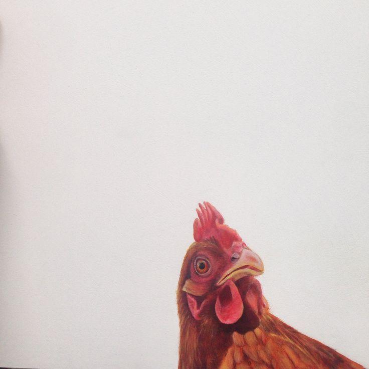 Chicken, Original Oil on Board by Charles Hannah Art & Design.