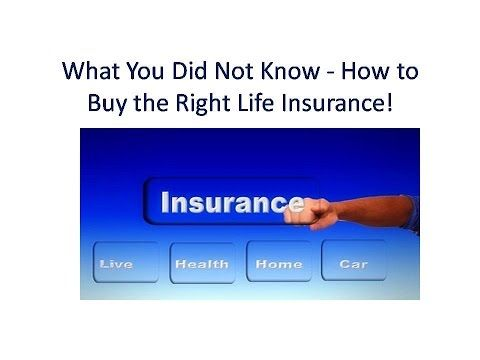 11 Free Tips - How to Buy the Right Life Insurance!