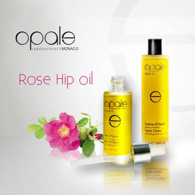 Pearl of Opale and Opale Caress reveal you the deepest secrets of Rose Hip oil. Its exceptional richness in essential fatty acids, Omega 3, 6 and 9, provides it with multiple regenerating properties: reduces wrinkles, moisturizes, repairs dry and devitalized skin as well as diminishes stretch marks.