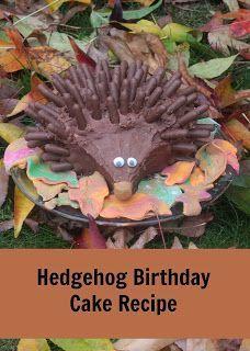 chocolate hedgehog birthday cake tutorial using cadbury chocolate fingers