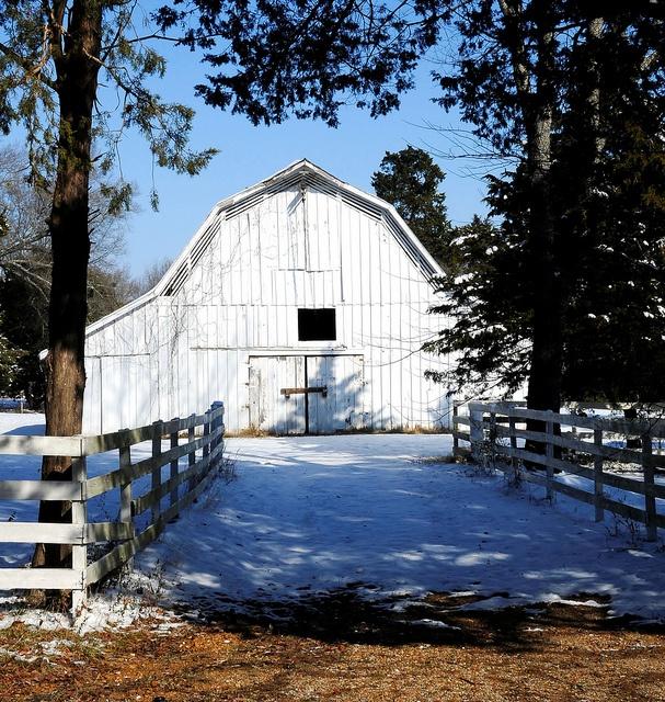 White-washed barn